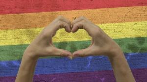 Hands Heart Symbol LGBT Flag